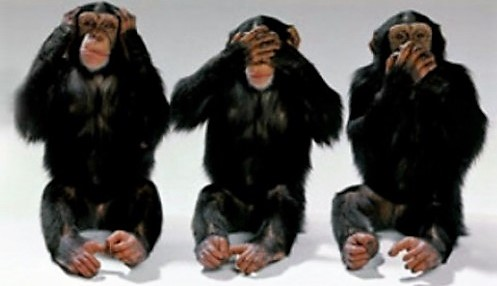 cropped-cropped-monkeys.us_