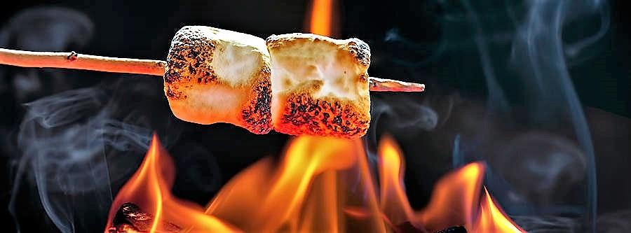 roasting-marshmallows-over-campfire-horizontal-banner-susan-schmitz