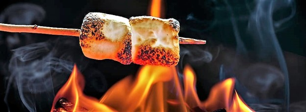 roasting-marshmallows-over-campfire-horizontal-banner-susan-schmitz
