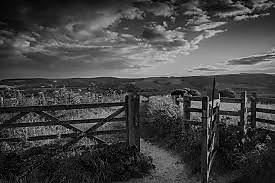 gate2